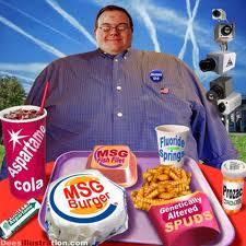 processed junk foods